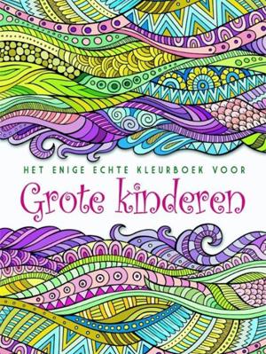 Het enige echte kleurboek voor grote kinderen
