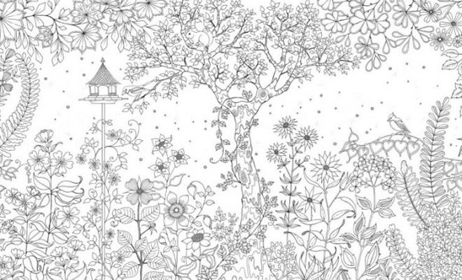 Kleurplaten Voor Volwassenen Mijn Geheime Tuin.Mijn Geheime Tuin Kleurplaten Tuincoach Blog Jouw Tuincoach Schrijft